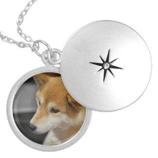 shiba-inu-2.jpg round locket necklace