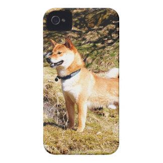 Shiba Inu Carcasa Para iPhone 4 De Case-Mate