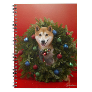 Shiba Inu dog sitting in Christmas wreath Spiral Notebook