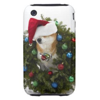 Shiba Inu dog wearing Santa hat sitting in iPhone 3 Tough Case