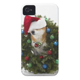 Shiba Inu dog wearing Santa hat sitting in iPhone 4 Cover