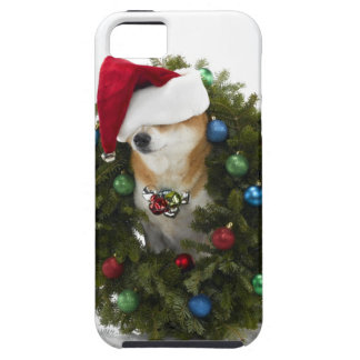 Shiba Inu dog wearing Santa hat sitting in iPhone SE/5/5s Case