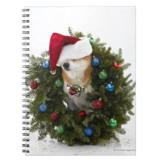 Shiba Inu dog wearing Santa hat sitting in Spiral Notebook