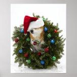 Shiba Inu dog wearing Santa hat sitting in Poster