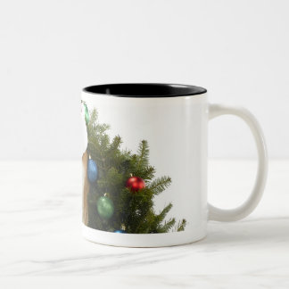 Shiba Inu dog wearing Santa hat sitting in Two-Tone Coffee Mug