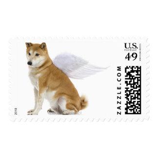Shiba Inu Dog with angel wings, studio shot Stamp