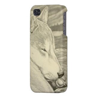 Shiba Inu Iphone 4 regalos del arte del perro el d iPhone 4/4S Fundas