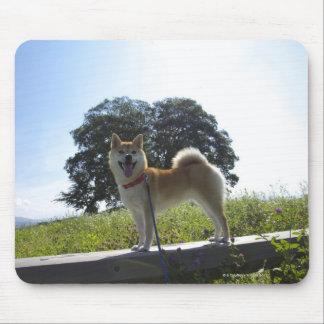 Shiba Inu Mouse Pad