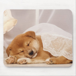 Shiba Inu puppy sleeping under a net curtain Mouse Pad