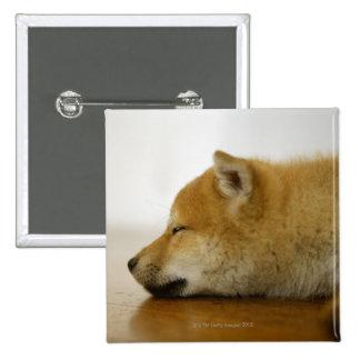 Shiba-ken durmiente 2 pin cuadrada 5 cm