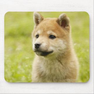 Shiba-ken puppy mouse pad