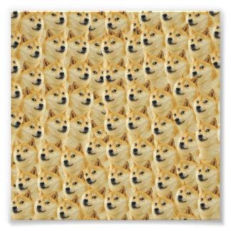 shibe doge fun and funny meme adorable photo print