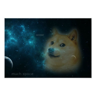 shibe doge in space poster