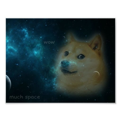 14011 doge in space - photo #3