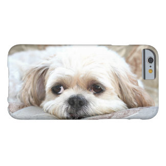 Shih triste Tzu hace frente Funda Barely There iPhone 6