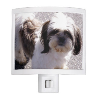 shih-tsu-1 night light