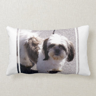 Shih Tsu Puppy Pillow