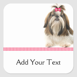 Shih Tsu with Pink Bow on Pink Diamond border Square Stickers