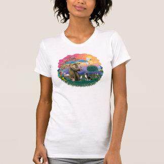 Shih Tzu 10 Camisetas