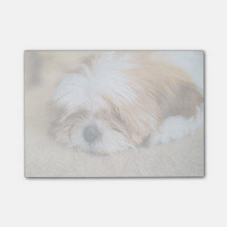 Shih Tzu (3 Months Old ) Post-it Notes