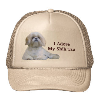 Shih Tzu adoro el gorra