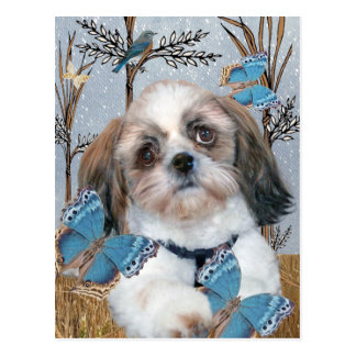Shih Tzu and Butterflies products Postcard