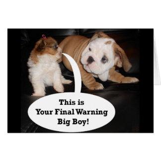 Shih Tzu and English Bulldog Puppys Greeting Card