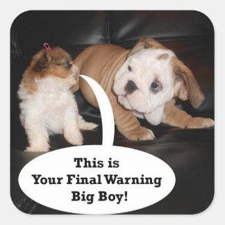 Shih Tzu and English Bulldog Puppys Sticker