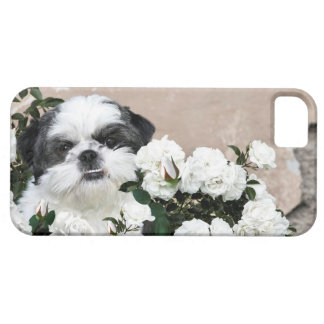 Shih Tzu and roses iPhone 5 Cases