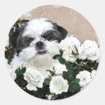 Shih Tzu and roses Classic Round Sticker