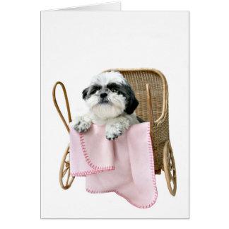Shih Tzu baby buggy Card