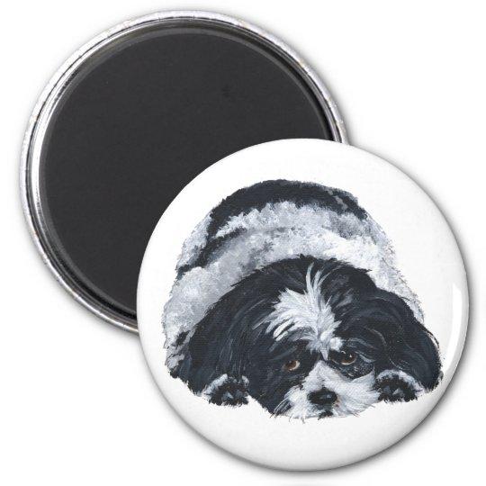 Shih Tzu Black & White Magnet