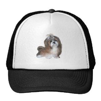 Shih Tzu - brown and white Trucker Hats