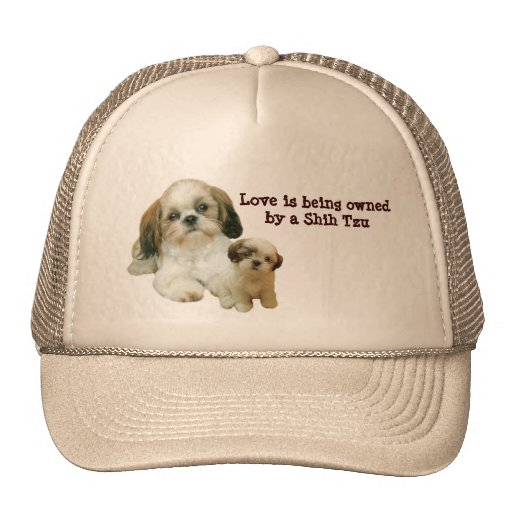Shih Tzu Buddies Hat