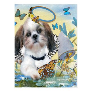 Shih Tzu Butterfly Chaser Cards