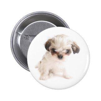 Shih Tzu Button