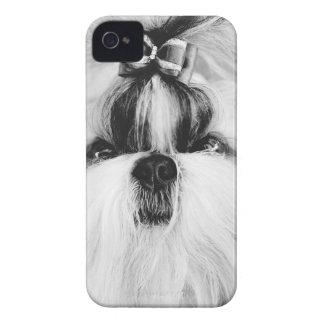 Shih Tzu Case-Mate iPhone 4 Case