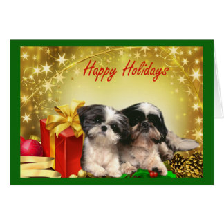 Shih Tzu  Christmas Card Gifts