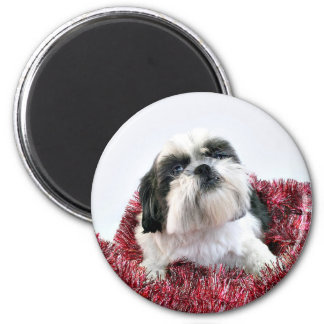 Shih Tzu Christmas Refrigerator Magnets
