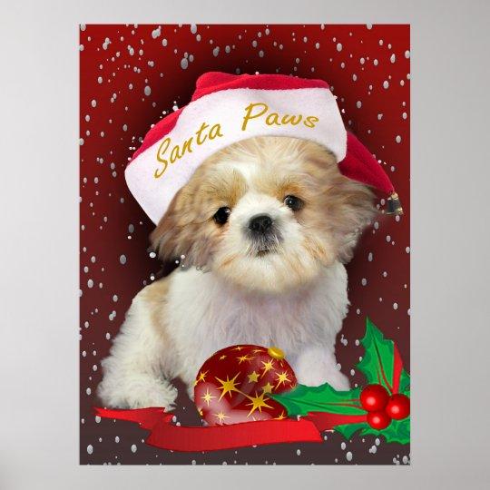 Shih Tzu  christmas Portrait Poster