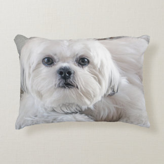 Shih Tzu Decorative Pillow