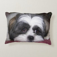 Shih Tzu Dog Accent Pillow