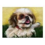 Shih Tzu Dog Art - Sophie Postcard