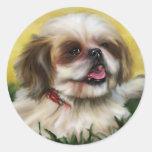 Shih Tzu Dog Art - Sophie Sticker