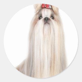 shih-tzu dog breeds シーズー - シーズー犬の品種 classic round sticker