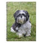 Shih Tzu dog cute beautiful photo notebook