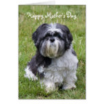 Shih Tzu dog cute mother's day greeting card