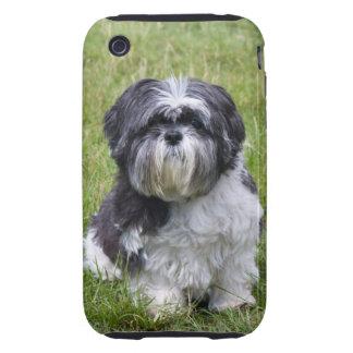 Shih Tzu dog cute photo iphone 3G case mate tough