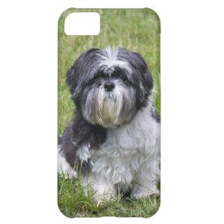 Shih Tzu dog cute photo iphone 5 case mate barely