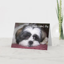 Shih Tzu Dog Father's Day Card